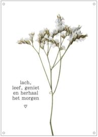 Tuinposter   Lach, leef, geniet en herhaal het morgen   bloem