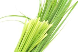1 ltr. Lemongrass etherische olie voor verstuiver