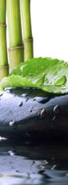 1 ltr. Bamboe parfum voor verstuiver