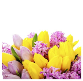100 ml flacon Secret Flower voor Aroma Stone Diffuser