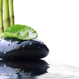 1 ltr. Bamboe opgietconcentraat - EXTRA GECONCENTREERD
