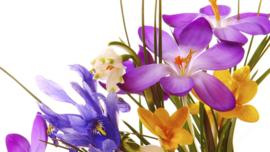 1 ltr. Flowerpassion parfum voor verstuiver