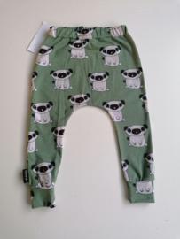 Harem pugs groen