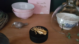 Gouden insect