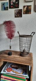 Struisvogelveer roze staande