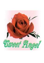 Sweet Angel microfiber boxers met strass-steentjes 8pack S/M