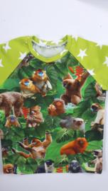 Apen sterren shirt lime