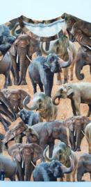 Olifanten longsleeve