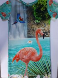 Flamingo jurk