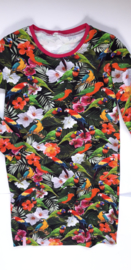 Papagaaien jurk