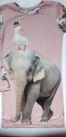 Olifanten paneel jurk maat 146