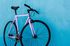 Perplexing purple singlespeed