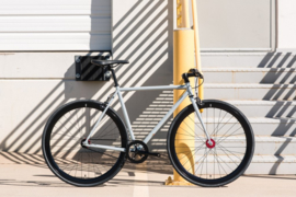 Pigeon singlespeed bike