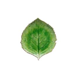 Schaaltje blad groen 17cm