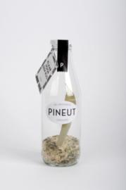 Pineut Likeur - Klaar voor een kus