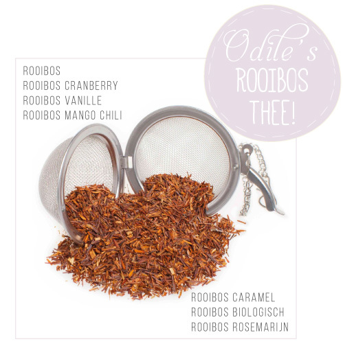 Rooibos-thee-Odiles-Giftshop