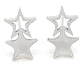 OOrbellen sterren zilverkleurig of rosé kleurig