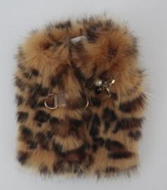 Orlov Leopard