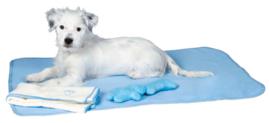 Puppy set blauw