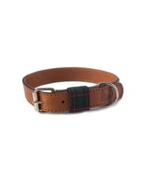 Edimburgh groen halsband