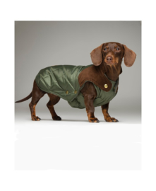 Quilted coat Willy Olive