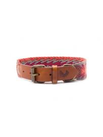 Peruvian Arrow orange dog collar