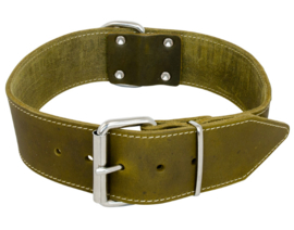 Brede Halsband Groen 70cm x 50mm