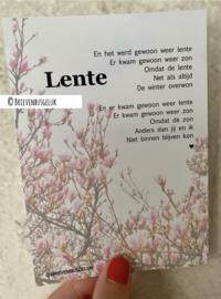 Lente - A6