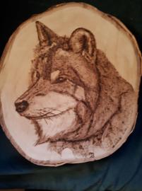 Wandbord rond met wolvenkop