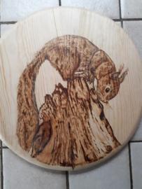 Wandbord rond met eekhoorn
