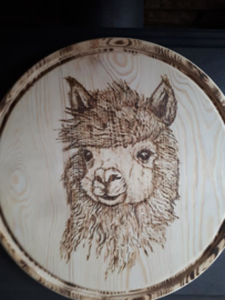 Wandbord rond alpacakop nr 1