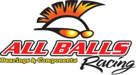 KTM SX 85 / HUSQVARNA TC 85 REPARATIE SET KOPPELING ALL BALLS RACING 2013 - 2019