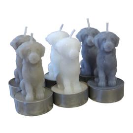 Theelichtjes hond 6,5cm, set 6 st/3 kleuren