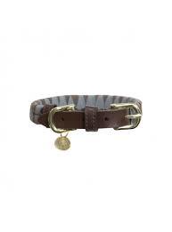 Kentucky dog collar triangle