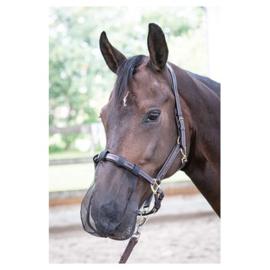 Harry horse Nose net zwart