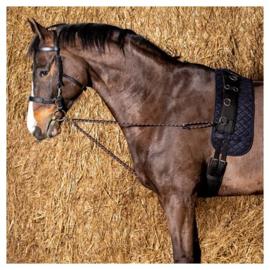 Longeerkoord V-line (paar)Harry horse
