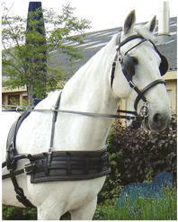 Harrys horse® tuigonderlegger Durable 120 CM