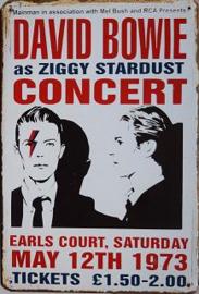 David Bowie Concert 1973 Metalen Wandbord 20x30 cm