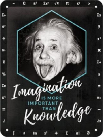 Einstein - Imagination & Knowledge. Metalen wandbord in reliëf 15 x 20 cm.