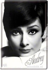 Audrey Hepburn Metalen Postcard 10 x 14 cm