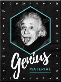 Einstein Genius Material. Koelkastmagneet 8 cm x 6 cm.
