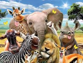 Afrika Selfie.  Metalen wandbord 40 x 30 cm.