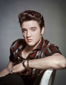 Elvis Presley Portrait.  Metalen wandbord 31,5 x 40,5 cm.