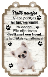Chihuahua Langharig Wit. Houten tekstbordje met hond 20 x 12 cm