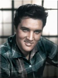 Elvis Presley in kleur. Koelkastmagneet 8 cm x 6 cm.
