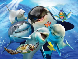 Oceaan Selfie.  Metalen wandbord 40 x 30 cm.