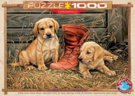 Something Old Something New Puzzel (1000)