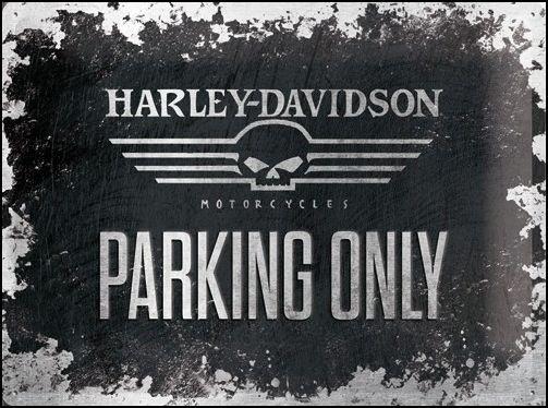 Harley-Davidson Skull Metalen wandbord inreliëf15x20cm