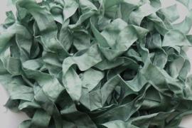 Metal Green