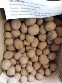 Brabantse Klei Aardappelen Bildtstar